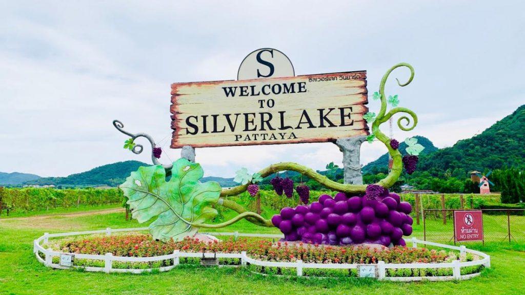 ซิลเวอร์เลค Silverlake